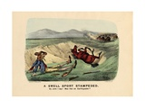 A Swell Sport Stampeded, Pub. by Currier and Ives, 1882