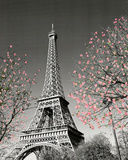 Paris Blossoms Mini Poster