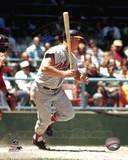 Baltimore Orioles - Boog Powell Photo