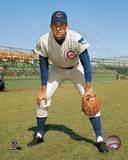 Chicago Cubs - Don Kessinger Photo