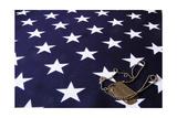 Dog Tag On American Flag