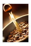 Buy Coffe Beans In The Grinder at AllPosters.com