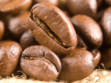 Buy Roasted Coffe Beans Macro Texture at AllPosters.com