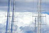 The Masts and Rigging of Yachts at Anchor in a Marina