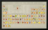 Periodic Table of the Fruits and Nuts Educational Food Poster