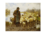 A Shepherd and Sheep