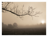 Parish Hill Sunrise