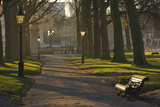 Sunrise, Green Park, London, England, United Kingdom, Europe