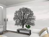 Silhouette Baum in Winterlandschaft Fototapete