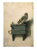 The Goldfinch, 1654 Art Print