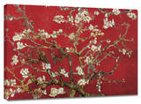 Buy Almond Blossom (Red) at AllPosters.com
