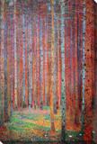 Pine Forest - Tannenwald