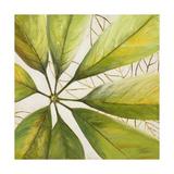 Fresh Leaves II