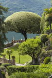 Terrace with Giant Topiary, Villa Barbonella, Lake Como, Lombardy, Italy, Europe