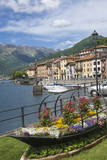 Buy Flower Boat, Domaso, Lake Como, Italian Lakes, Lombardy, Italy, Europe at AllPosters.com