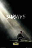 Walking Dead - Survive