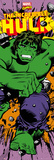 Marvel - The Hulk