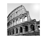 Buy Black And White Photo Of Colosseum, Rome Italy at AllPosters.com