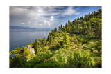 Buy Terraced Hillside at the Coast, Portofino, Italy at AllPosters.com