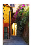 Buy Colorful Alley in Portofino at AllPosters.com