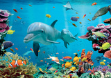 Tropical Underwater Ocean Giant Poster