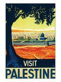 Visit Palestine Art Print