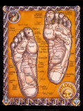 Buy Reflexology at AllPosters.com
