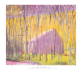Saltbox Barn, 2002 Art Print