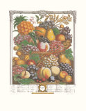 Twelve Months of Fruits, 1732, October Art Print