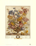 Twelve Months of Flowers, 1730, April Art Print