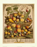 Fruits of the Season, Summer Art Print