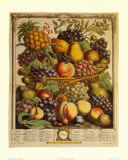Fruits of the Season, Winter Art Print