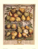 Fruits of the Season, Spring Art Print