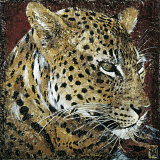 Leopard Portrait