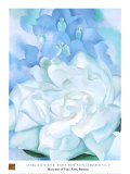 Buy White Rose W/ Lakspur No.2 at AllPosters.com
