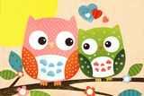 Sweet Owl - Hello