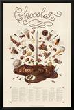 Chocolate Educational Food Poster
