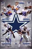 Dallas Cowboys - Team 14