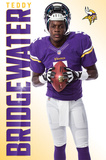 Minnesota Vikings - T Bridgewater 14