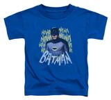 Toddler: Batman Classic TV - Theme Song
