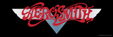 Aerosmith - Dream On Banner 1973