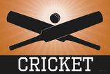 Cricket Orange Sports