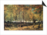 Buy Lane with Poplars at AllPosters.com