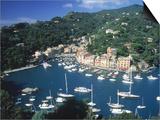 Buy Portofino, Italy at AllPosters.com