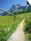 Buy Trail to the Sexton Sundial, Sesto, Italy at AllPosters.com