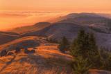 Golden Sunset Burn at Mount Tamalpais, Marin County