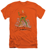 Aquaman - Aquaman Distressed (slim fit)