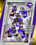 Minnesota Vikings 2014 Team Composite