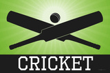 Cricket Green Sports Poster Print