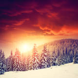 Fantastic Evening Landscape in a Colorful Sunlight. Dramatic Wintry Scene. National Park Carpathian